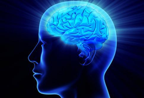 11 Cara Meningkatkan IQ Otak