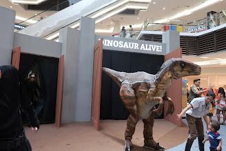 DINOSAURS ALIVE ! di Paradigm Mall waktu cuti sekolah ni.
