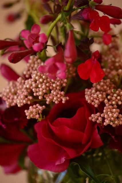 monday vase, ranunculus, cutflower, penstemon, small sunny garden, desert garden, amy myers, ozothamnus