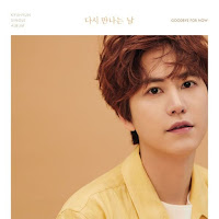 Downlaod Mp3, MV, Lyrics KYUHYUN - The Parting (이젠, 안녕)
