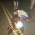 Colisão deixa um ferido em rodovia que liga Belém a Pirpirituba