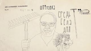 Олег Кашин о стороне дела Скрипаля, которую все забыли