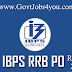 IBPS RRB PO Prelims Result will be Out By Late Evening Today