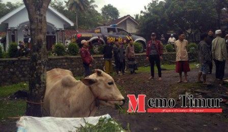 desa ranulogong kecamatan randuagung
