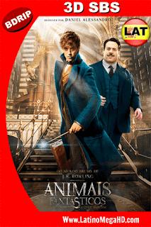 Animales Fantásticos y Dónde Encontrarlos (2016) Latino FULL 3D SBS BDRIP 1080P - 2016