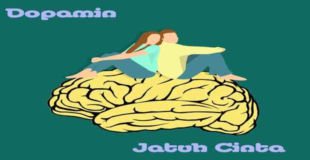 Apa itu dopamine? Fungsi Dopamin? Efek dari Kekurangan atau Kelebihan Dopamin?