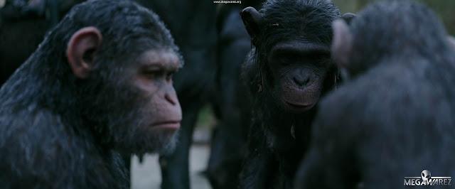 El Planeta de los Simios: La Guerra 2017 imagenes
