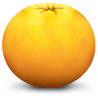 orange fruit icons 2