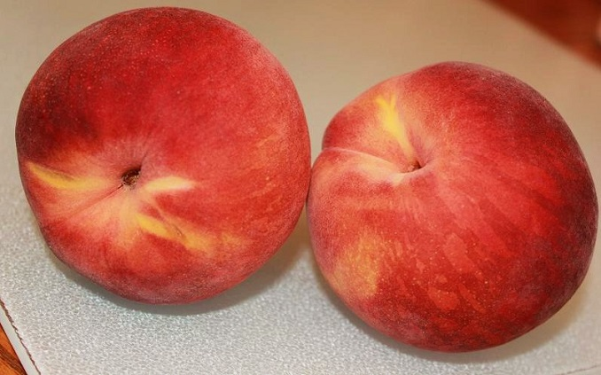 these are fresh peaches that will be used in a homemade from scratch peach cobbler recipe