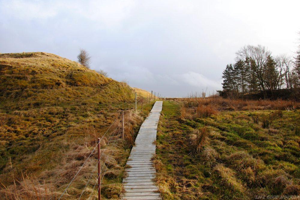 Dania - pierwsze wspomnienia z Jutlandii.