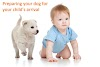 Preparing your dog for your child's arrival