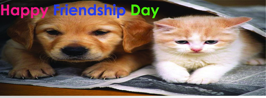 facebook cover friendship day