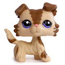 Littlest Pet Shop Multi Pack Collie (#2210) Pet