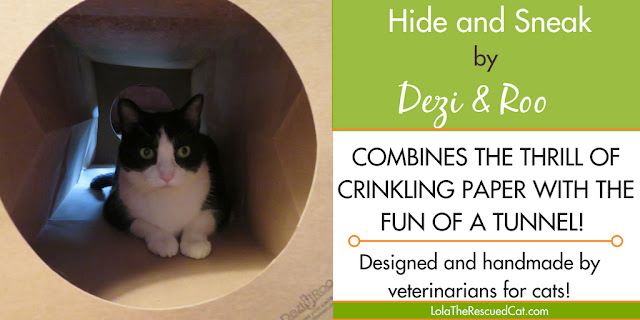 hide and sneak|dezi & roo|cat enrichment
