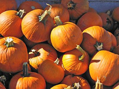 How to make nearly-free pumpkin puree.