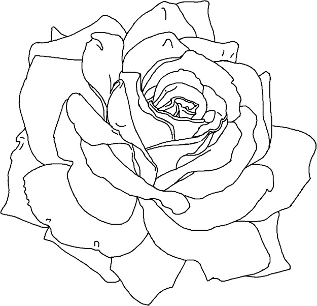 Rose Flower Coloring Pages Printable