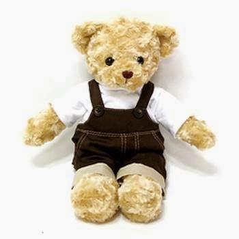 Gambar boneka teddy bear pakai rompi