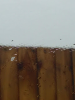Rain smudged view of a fence top, photo taken from inside car