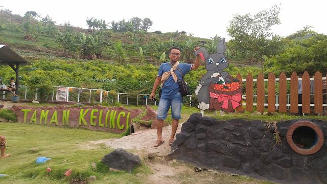 Lokasi wisata Taman Kelinci di dekat dengan petik buah strawberry padusan Pacet Mojokerto