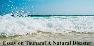 Essay on Tsunami A Natural Disaster