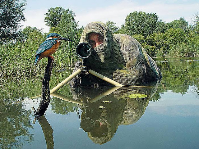 Crazy Photographers Spy Bird