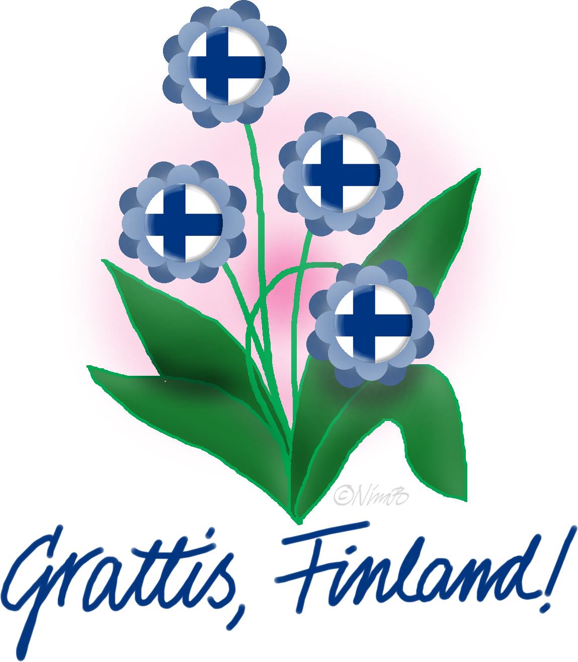 grattis finland Ruckelhäxan Stjärnkraft: Självständigt grattis finland