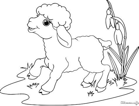 Coloriage Mouton Maternelle Dessin Gratuit A Imprimer Coloriage