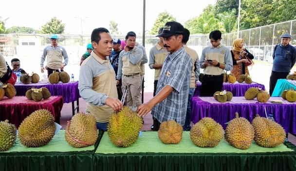 Pasar Tani dan Festival Durian