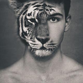 tigerman,tiger,manusia harimau,harimauu jadian