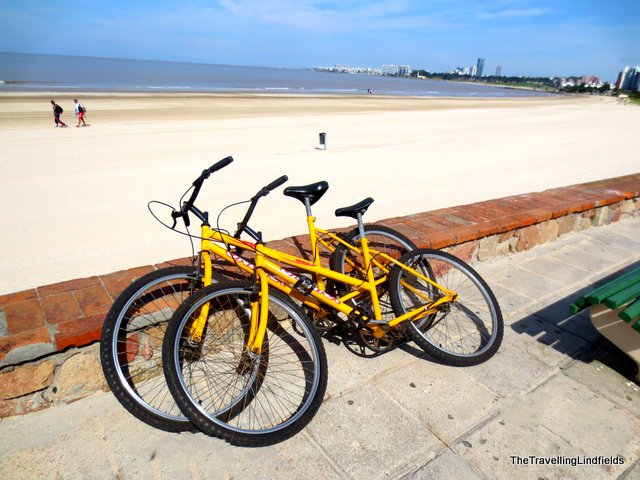 Our free bicycles in Montevideo