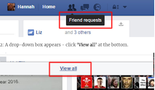 Auto Add Friend Requests Facebook