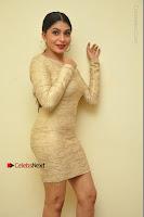 Actress Pooja Roshan Stills in Golden Short Dress at Box Movie Audio Launch  0134.JPG