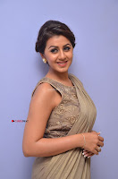 Nikki Galrani in Saree 035.JPG