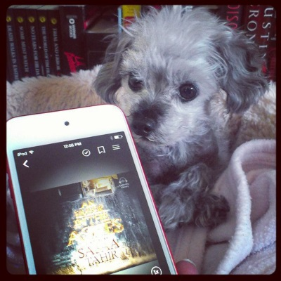 Murchie lays in his dog bed, paws crossed in front of him and ears perked. In the front of the frame is a white iPod with An Ember in The Ashes's grey-toned cover on its screen. The title appears emblazoned upon a tall cliff with some vaguely church-like buildings on top of it.