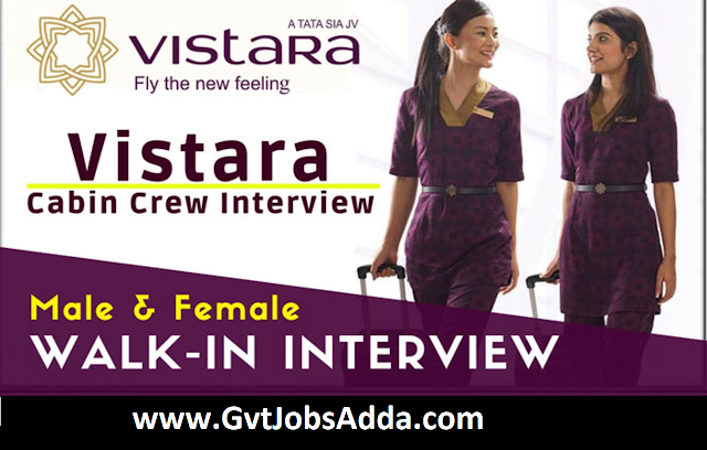 Vistara cabin crew interview