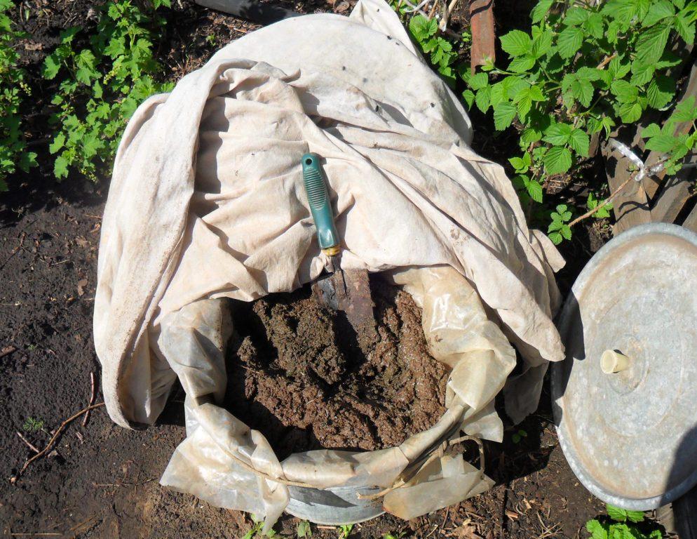 Как использовать куриный помет в огороде