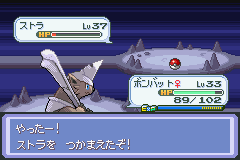 pokemon deneb procyon screenshot 17
