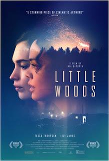 http://www.anrdoezrs.net/links/8819617/type/dlg/https://www.fandango.com/little-woods-214164/movie-overview