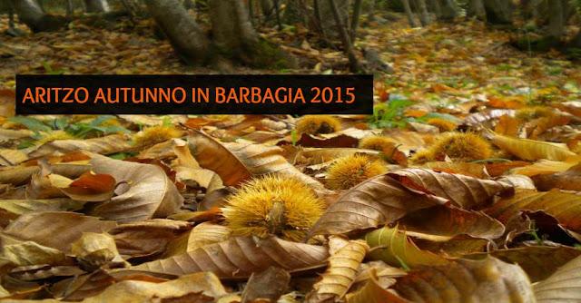 FOTO AUTUNNO IN BARBAGIA 2015 AD ARITZO