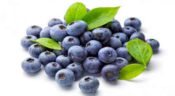 blueberries for diabetes