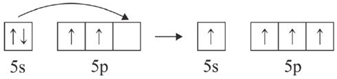molekul SnCl4