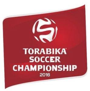 Jadwal Lengkap Pertandingan Persib Bandung di TSC 2016