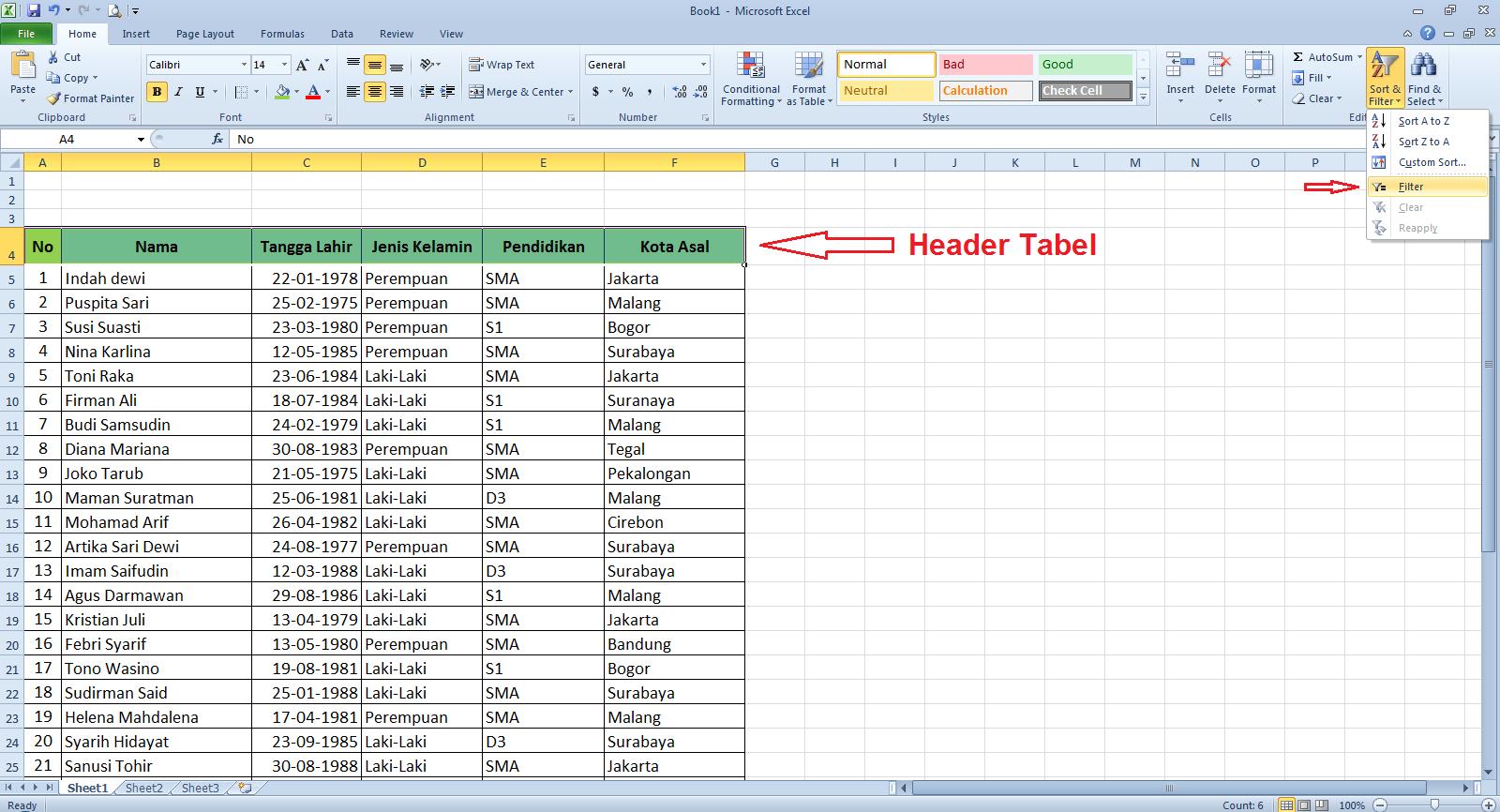 Cara Membuat Filter Data Di Microsoft Excel Cari2 Cara