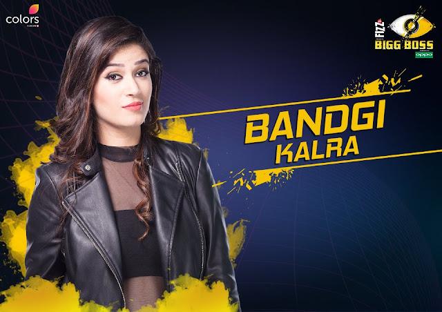 Bandagi Kalra (Bigg Boss 11 Contestant)
