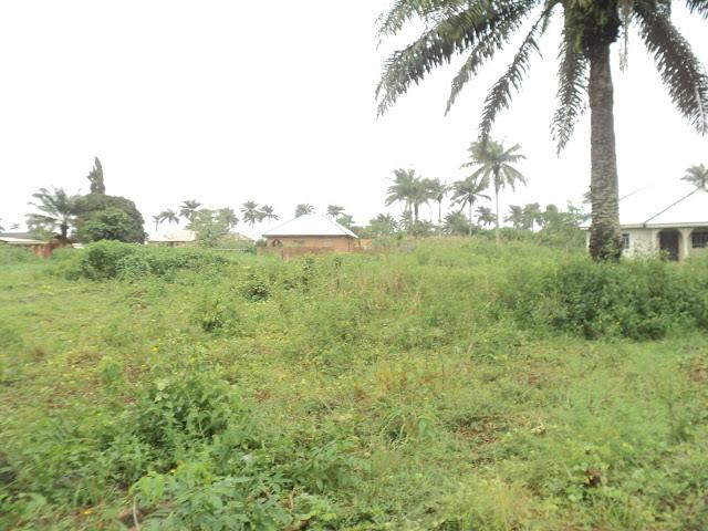 Land at Ibekan Community Fifth View