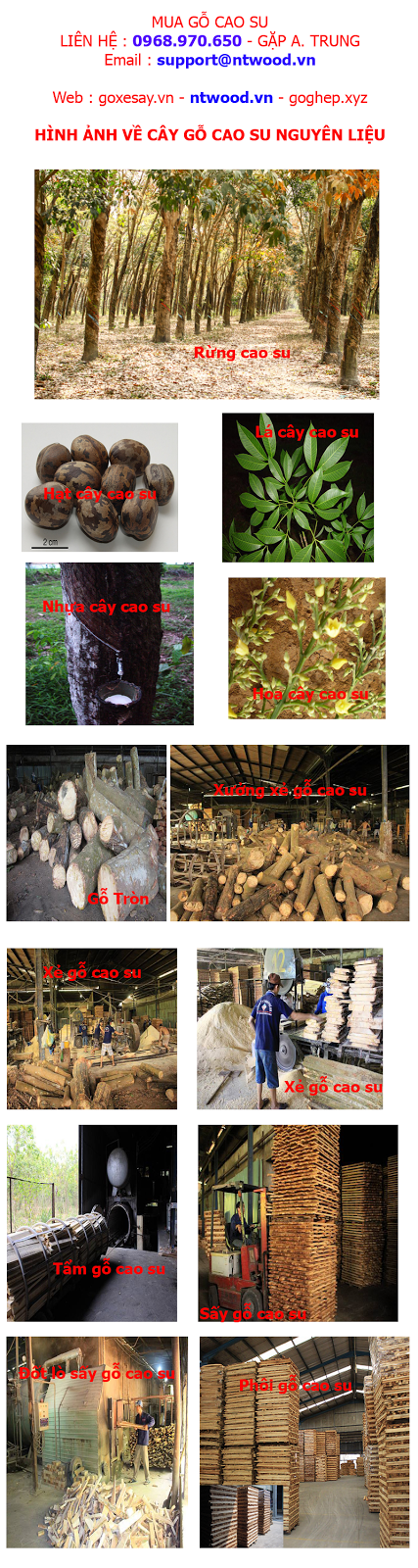 nguyên liệu gỗ cao su