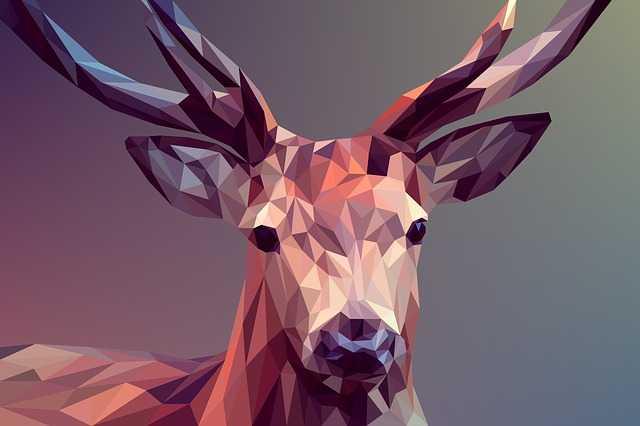 9 Ilmu Desain Grafis yang Penting untuk Dipelajari