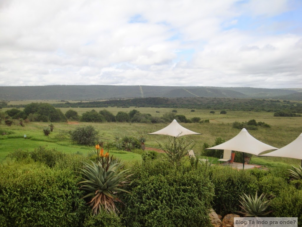 Long Lee Manor - Shamwari Game Reserve
