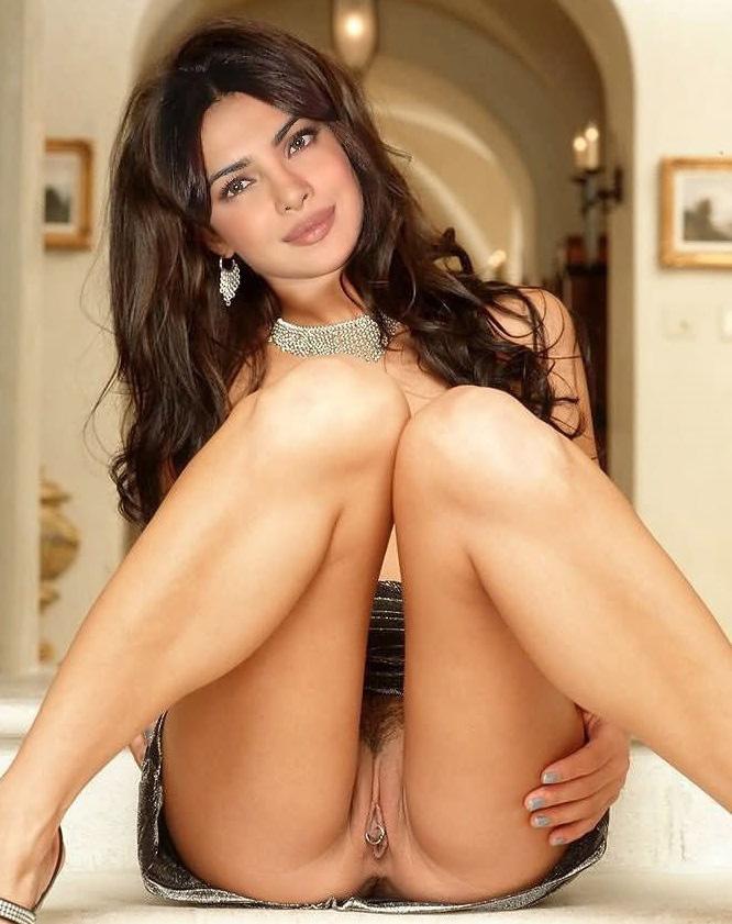 Desi Aunty Big Ass Bollywood Actress Priyanka Chopra -4609