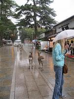 Rainy Season Over in Kansai.